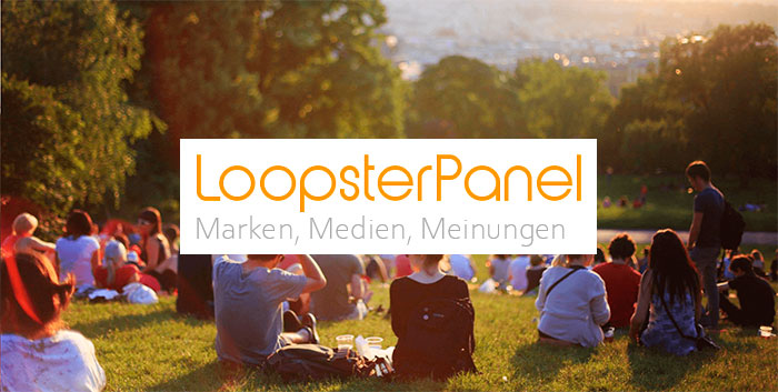 guía LoopsterPanel